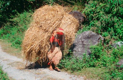 Women Nepal