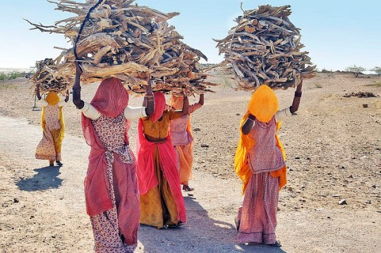 Women wood