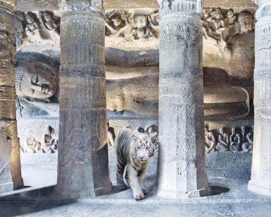 P13 Mahasattvas-Sacrifice-1250x1000