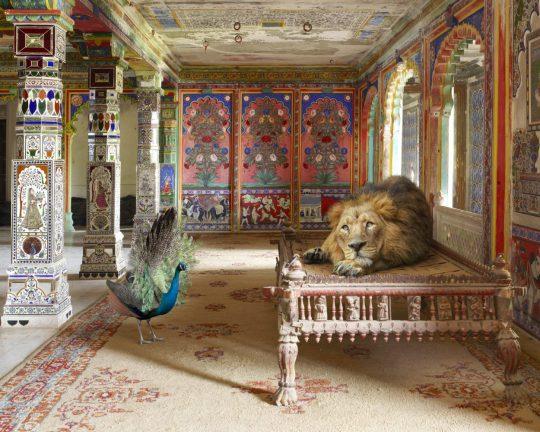 P6 The-Lovesick-Prince-Aam-Khas-Junha-Mahal-Dungarpur-copy-1250x1000